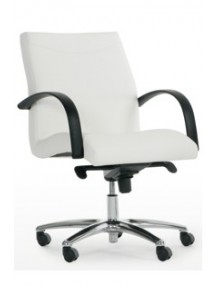 Swivel chair (Seat and back...